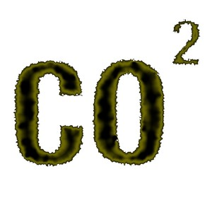 Was bedeutet 1 Tonne CO2?